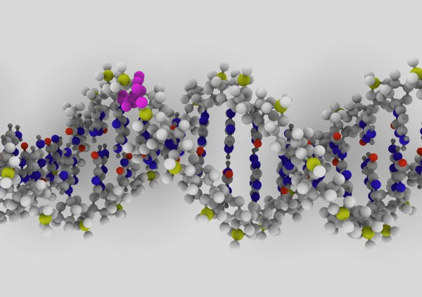 DNA | Photo: Flickr user ynse (modified), CC BY-SA 2.0