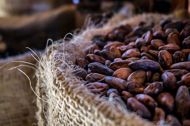 Cacao, the center of the sacred heart of the sun | Photo: Giulian Frisoni, CC BY 2.0