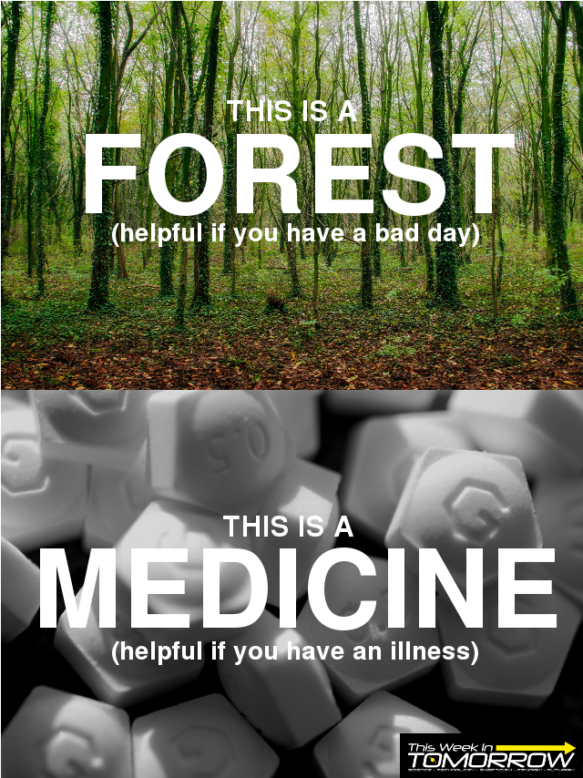 This is a forest (helpful if you have a bad day) This is a medicine (helpful if you have an illness)